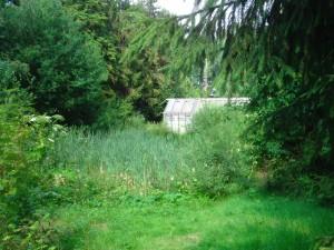 zelfoogsttuin_hetproefveld